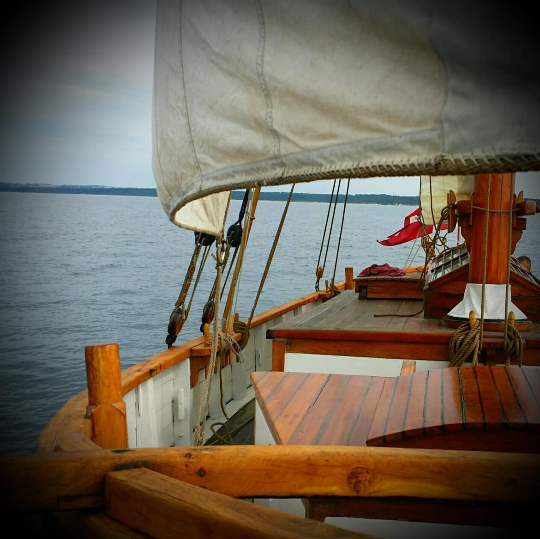 Spidsgatter Damkutter ( Tidl. båd ) billede 2