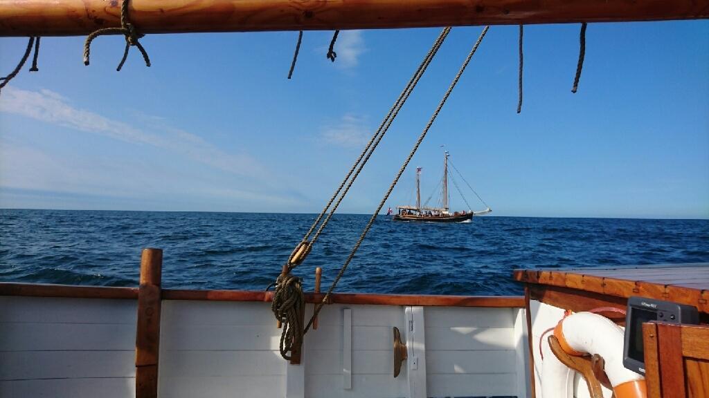 Spidsgatter Damkutter ( Tidl. båd ) billede 36