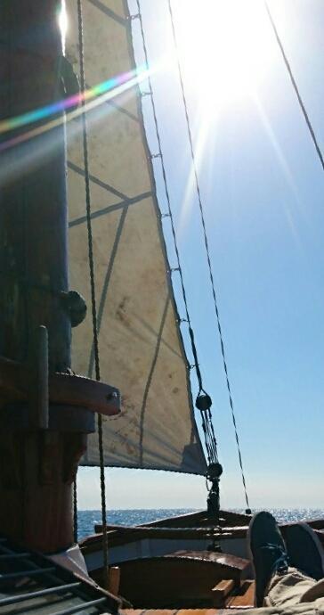 Spidsgatter Damkutter ( Tidl. båd ) billede 38