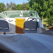 Daycruiser Felco 520 delfyn