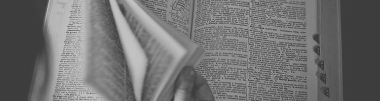 Online ordbøger bliver mere og mere populære