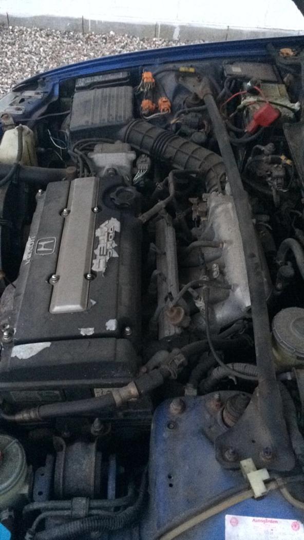 HONDA CIVIC EG6 renovering billede 6