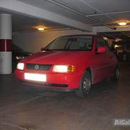 VW Polo SOLGT!