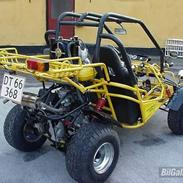Texas 250ccm Buggy