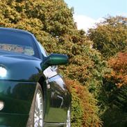 Alfa Romeo GTV              QV