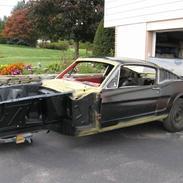 Amerikaner Mustang FastBack 2+2