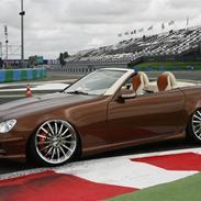 """Mercedes Benz SLK """"Custom"""""""