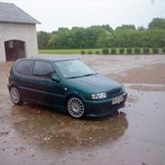 VW Polo 6n 1.6 [Tidl. Bil]