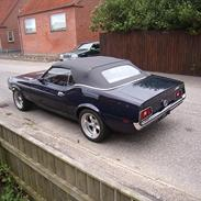 Ford Mustang olympic sprint