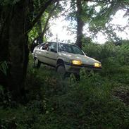 Citroën BX 19 TZD