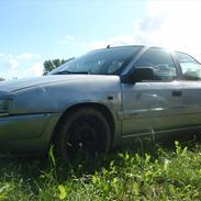 Citroën Xantia 2.0 (Møgspand) Aflivet!