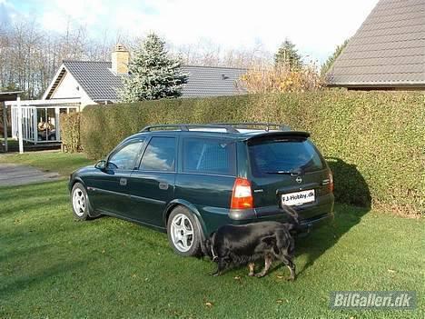 Opel Vectra B Wagon **Solgt** - Den nymonterede Irmscher Hæk spoiler og de nye vinter ruller. billede 11