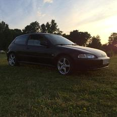 Honda Civic Eg hatch