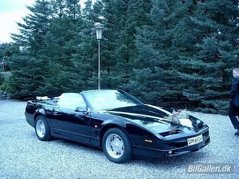 Pontiac Trans Am GTA Special E. - Mens vi boede i DK, blev bilen brugt til nogle venners bryllup. billede 8