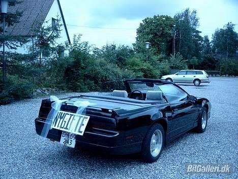 Pontiac Trans Am GTA Special E. - Sådan så den ud efter 8 timers polering, og meget ømme hænder. billede 9