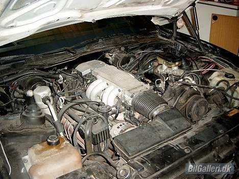 Pontiac Trans Am GTA Special E. billede 10