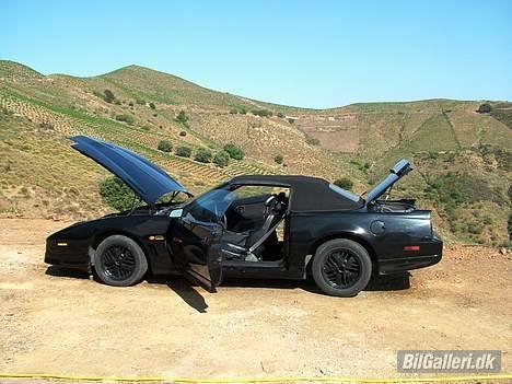 Pontiac Trans Am GTA Special E. - Der manglede lige et enkelt billede af bilen med kalechen oppe. ;-) billede 15