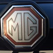 MG Zt 190