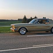 Ford Mustang HiPo Coupé