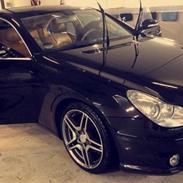 Mercedes Benz CLS  (AMG)
