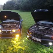 """BMW E46 330D Mtech """"Black on Black"""""""