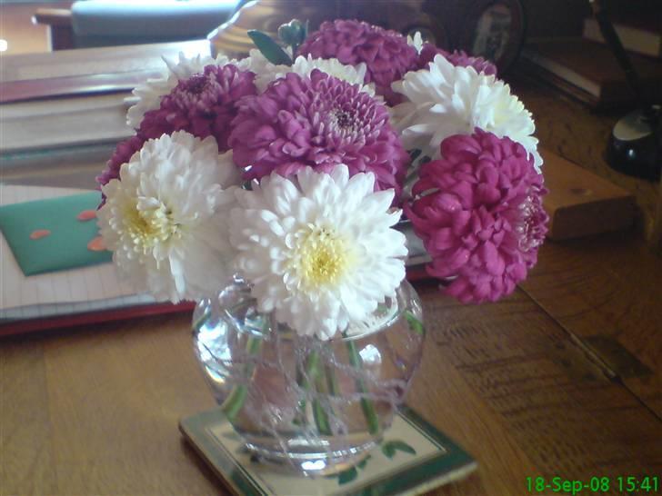 Blomster buketter   off topic   fotos fra karin