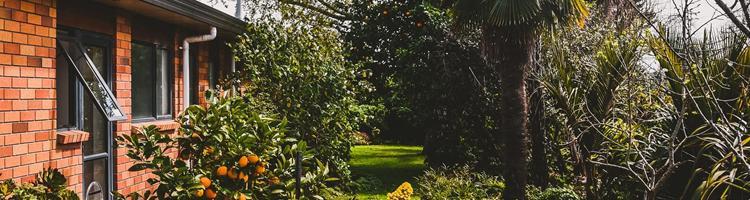 Gode tips til at gøre haven sommerklar