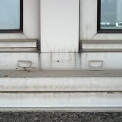 Plastikvindure kan skabe skimmelsvamp i huse