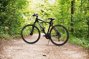Cykelauktioner