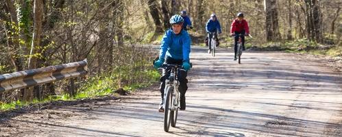 Viborg: Den midtjyske Cykelstjerne