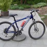 Bianchi DoSS 6100