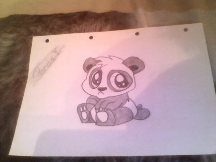 forskellige tegninger     tegninger   uploadet af natascha j