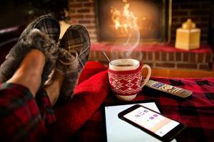 Underholdning i hjemmet – kæledyr kræver opmærksomhed