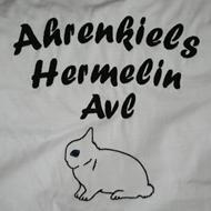 Ahrenkiels hermelinavl .