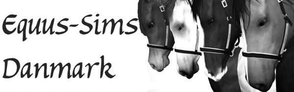 Kan du lide heste og sims 3? Se her