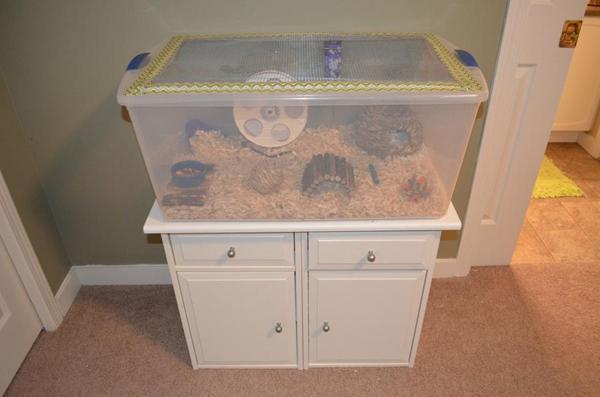 Plastikkasse som bur til hamster/mus
