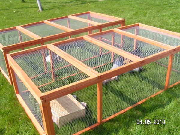 Kaninbur bilka – Rengøring værelser
