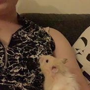 Hamster Milo Emil
