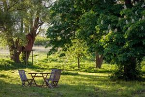 Gode råd til en mere bæredygtig have