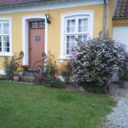 Villa/hushave 3000 m2