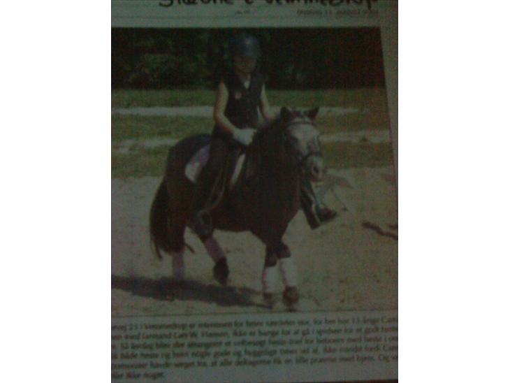 Min første pony Beetoven - Fra et stævne, hvor vi kom i avisen :D