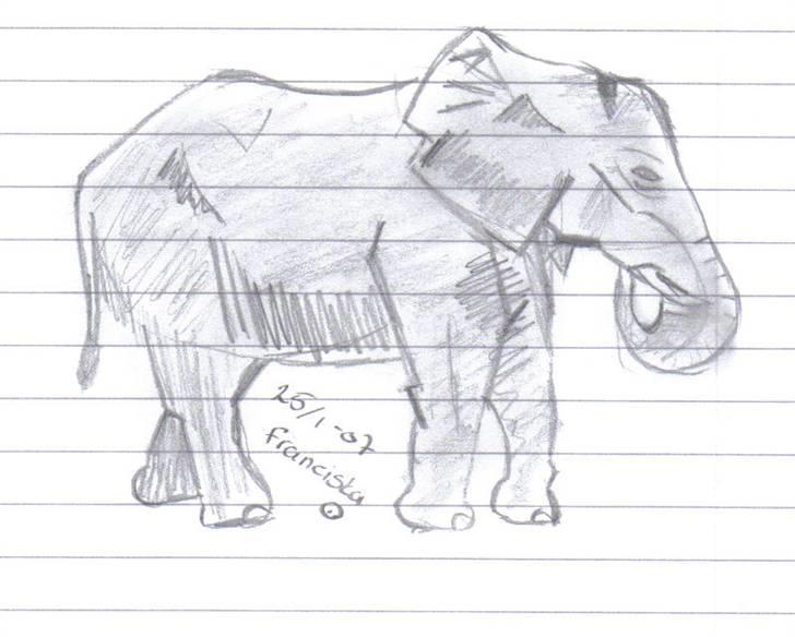 mine tegninger af forskellige dyr   tegninger   fotos fra