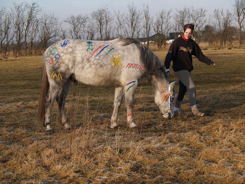 Muffa Som Indianer Hest Diverse Hest Fotos Fra Sascha Og