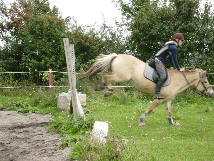 Spring træning på Anemone, 2011.