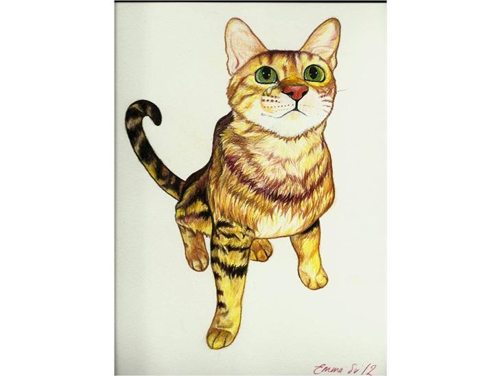 Kattetegning - Lille kattetegning :-)