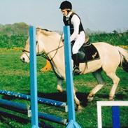 Heste jeg har redet. :)