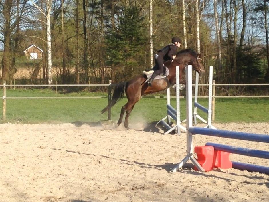 springning