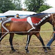 Hestene på Gammelgaard