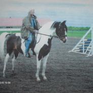 Bare nogle af vores rigtig gode heste gennem mange år.