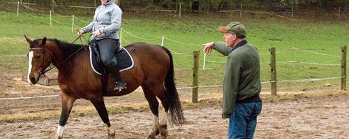 Min hest er ukoncentreret og mister fokus
